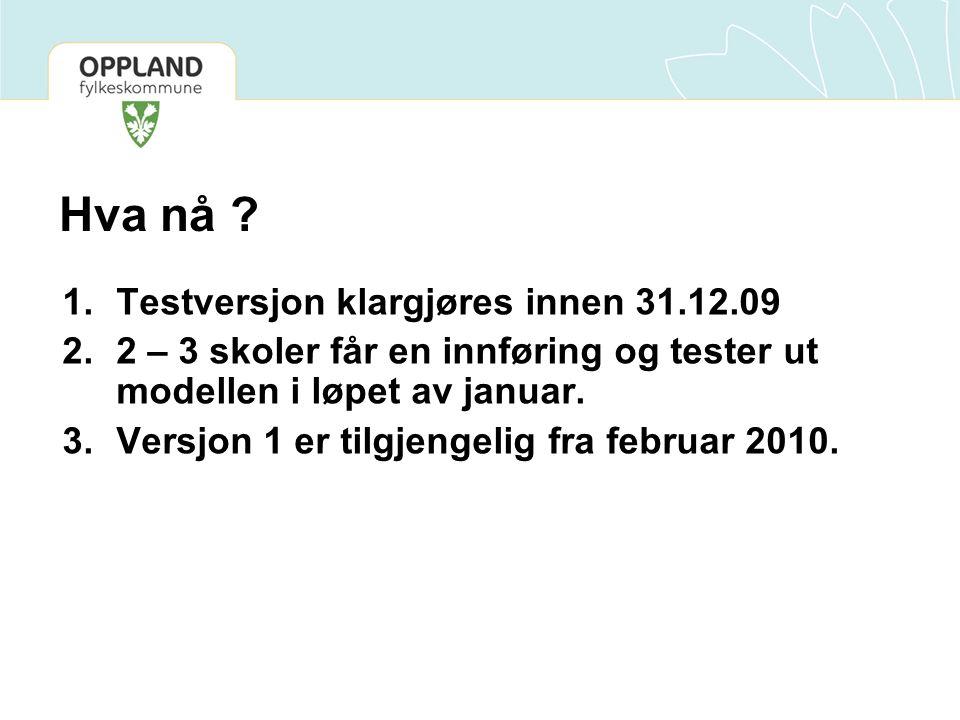 Hva nå Testversjon klargjøres innen 31.12.09