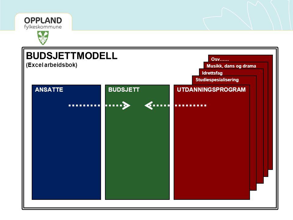 BUDSJETTMODELL (Excel arbeidsbok) ANSATTE BUDSJETT UTDANNINGSPROGRAM
