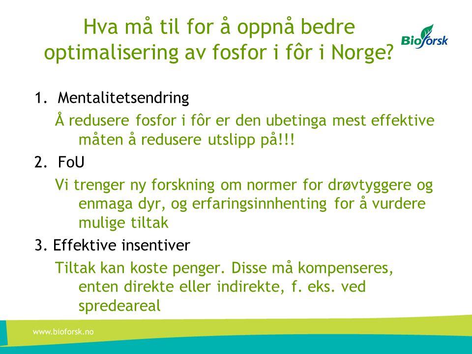 Hva må til for å oppnå bedre optimalisering av fosfor i fôr i Norge
