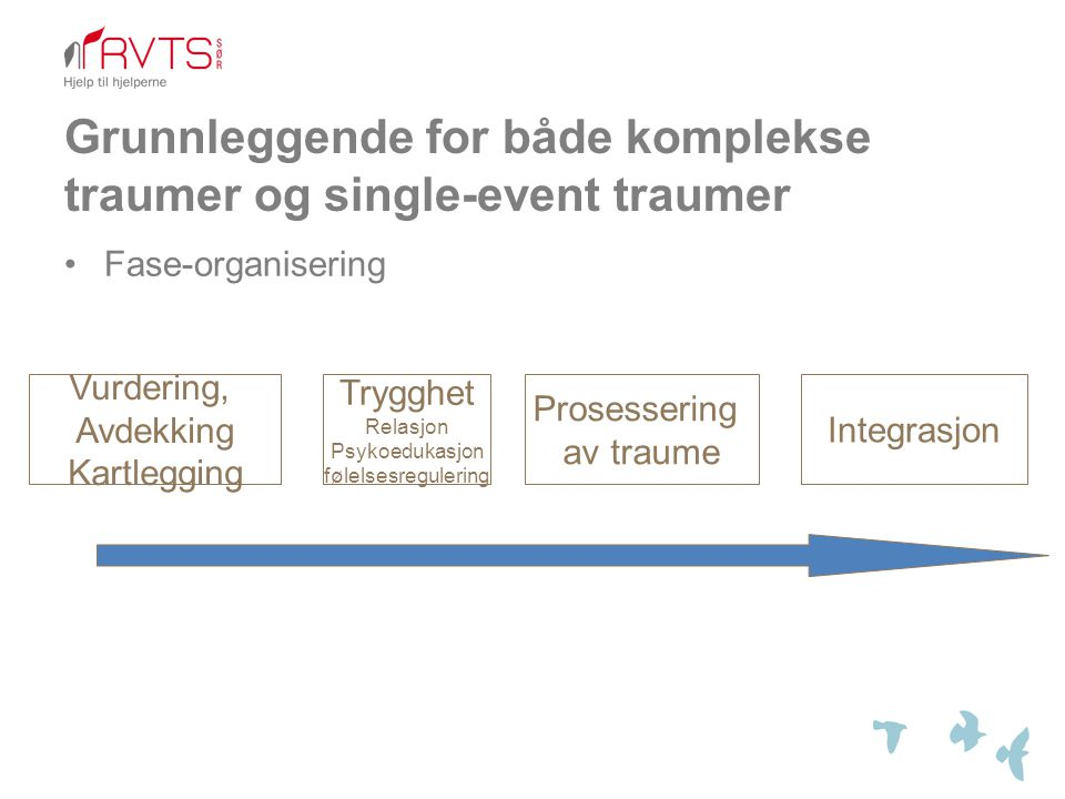 Grunnleggende for både komplekse traumer og single-event traumer