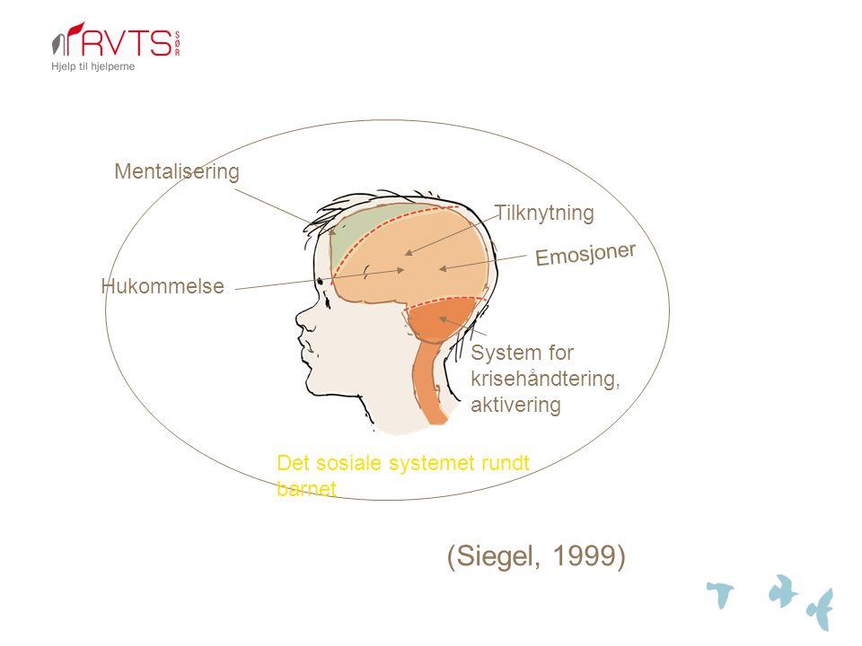 (Siegel, 1999) Mentalisering Tilknytning Emosjoner Hukommelse