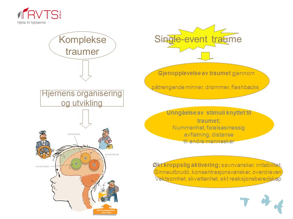 Single-event traume Komplekse traumer Hjernens organisering