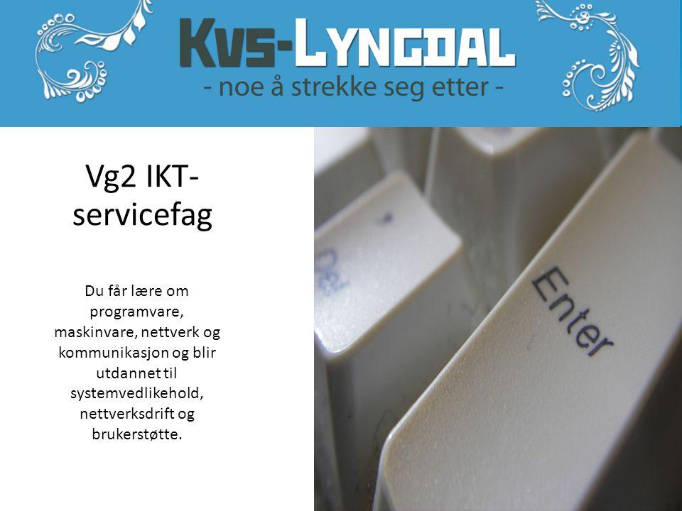 Vg2 IKT-servicefag