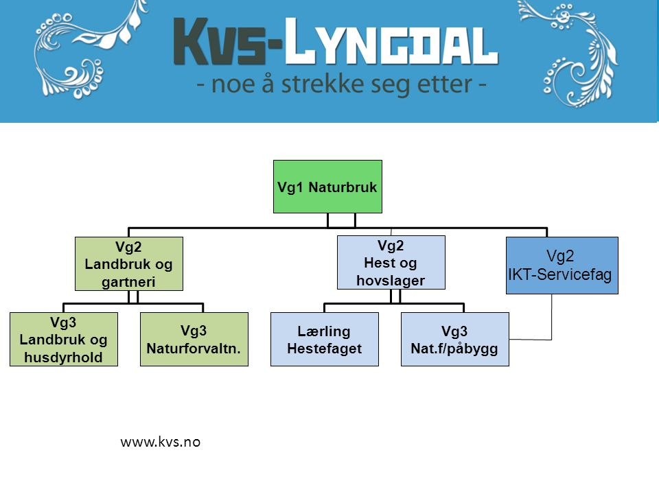 www.kvs.no Vg2 IKT-Servicefag Vg1 Naturbruk Vg2 Landbruk og gartneri