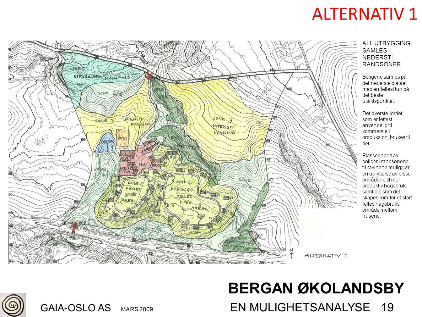BERGAN ØKOLANDSBY GAIA-OSLO AS MARS 2009 EN MULIGHETSANALYSE 19