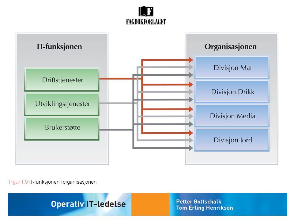 Figur 1.9 IT-funksjonen i organisasjonen