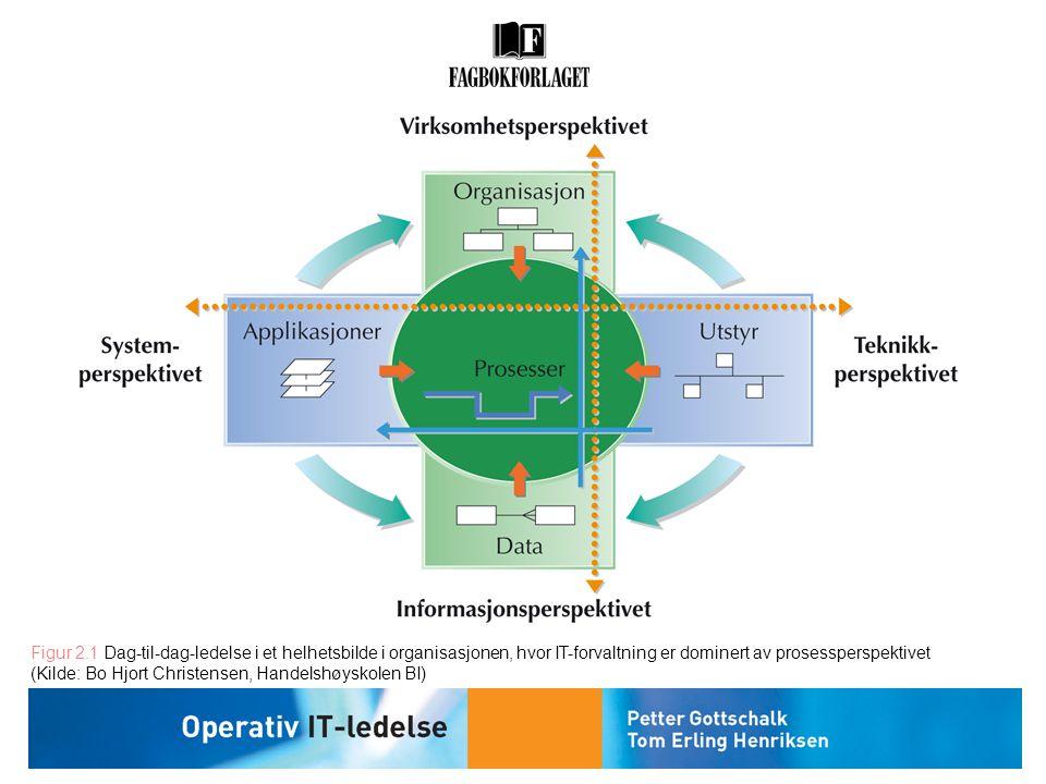 Figur 2.1 Dag-til-dag-ledelse i et helhetsbilde i organisasjonen, hvor IT-forvaltning er dominert av prosessperspektivet