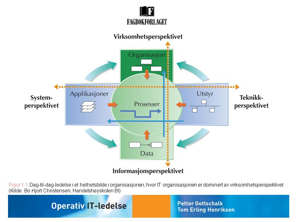Figur 1.1 Dag-til-dag-ledelse i et helhetsbilde i organisasjonen, hvor IT organisasjonen er dominert av virksomhetsperspektivet