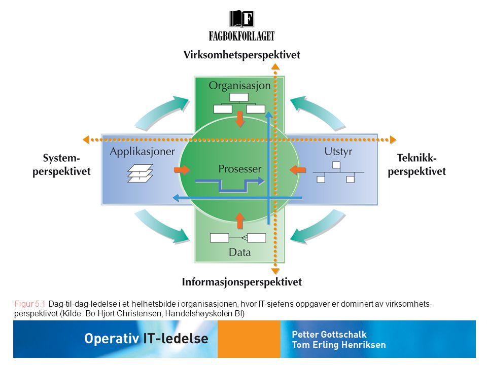 Figur 5.1 Dag-til-dag-ledelse i et helhetsbilde i organisasjonen, hvor IT-sjefens oppgaver er dominert av virksomhets-