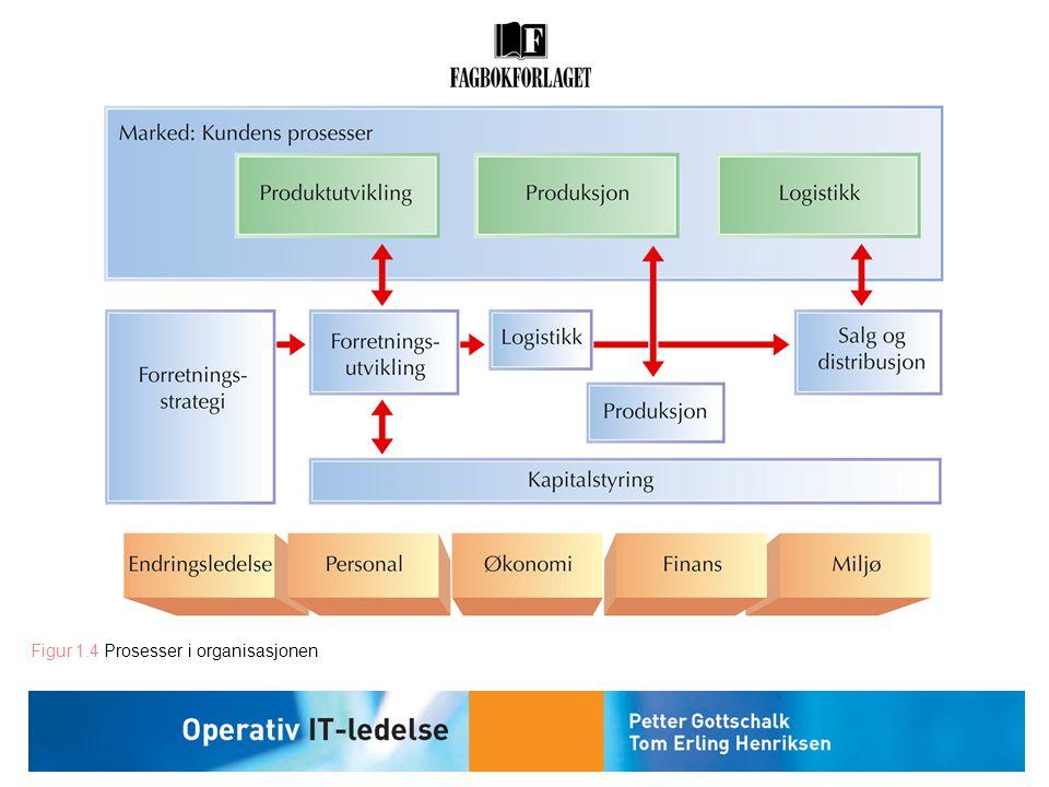 Figur 1.4 Prosesser i organisasjonen