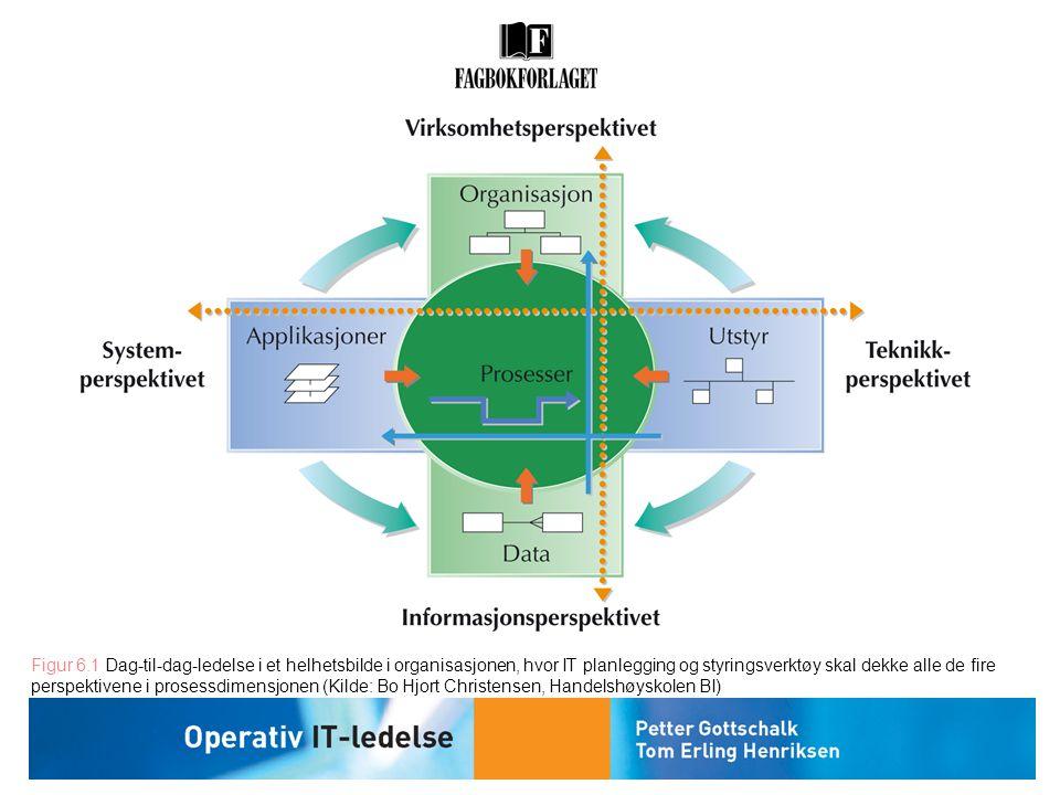 Figur 6.1 Dag-til-dag-ledelse i et helhetsbilde i organisasjonen, hvor IT planlegging og styringsverktøy skal dekke alle de fire