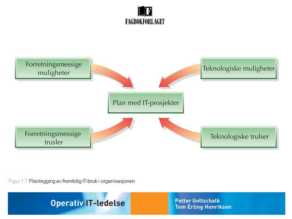 Figur 1.7 Planlegging av fremtidig IT-bruk i organisasjonen