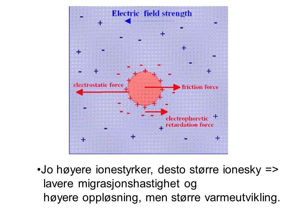 Jo høyere ionestyrker, desto større ionesky =>