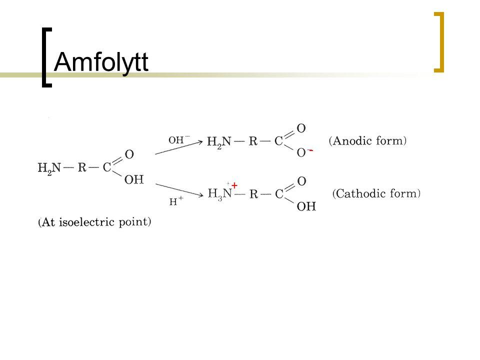 Amfolytt - +