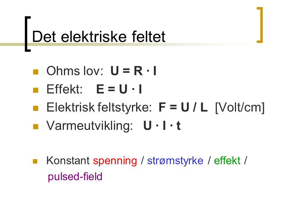 Det elektriske feltet Ohms lov: U = R · I Effekt: E = U · I