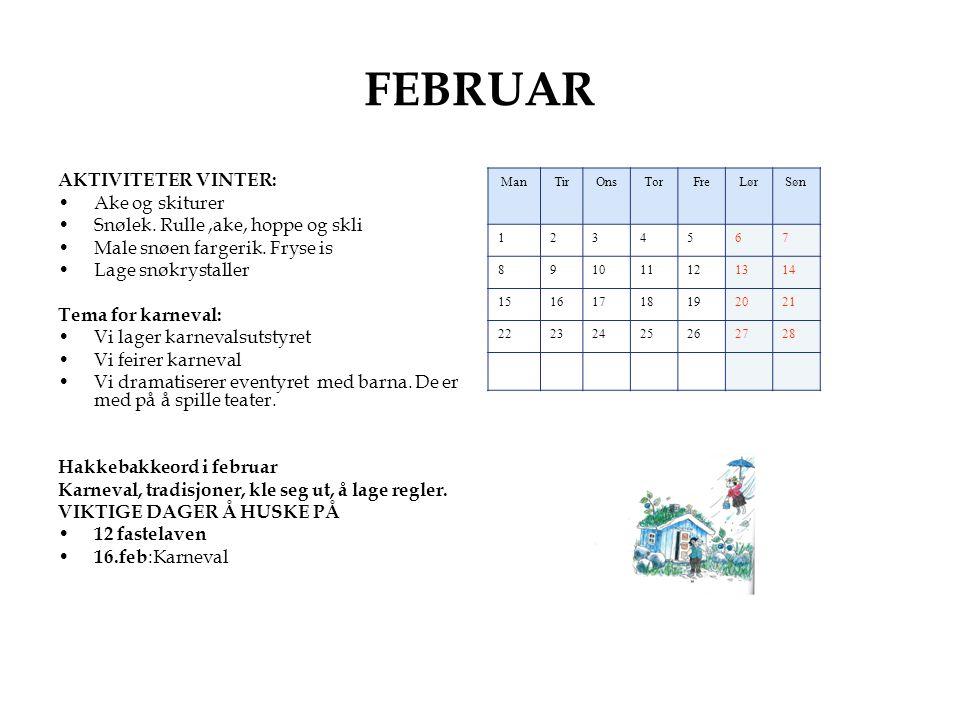FEBRUAR AKTIVITETER VINTER: Ake og skiturer