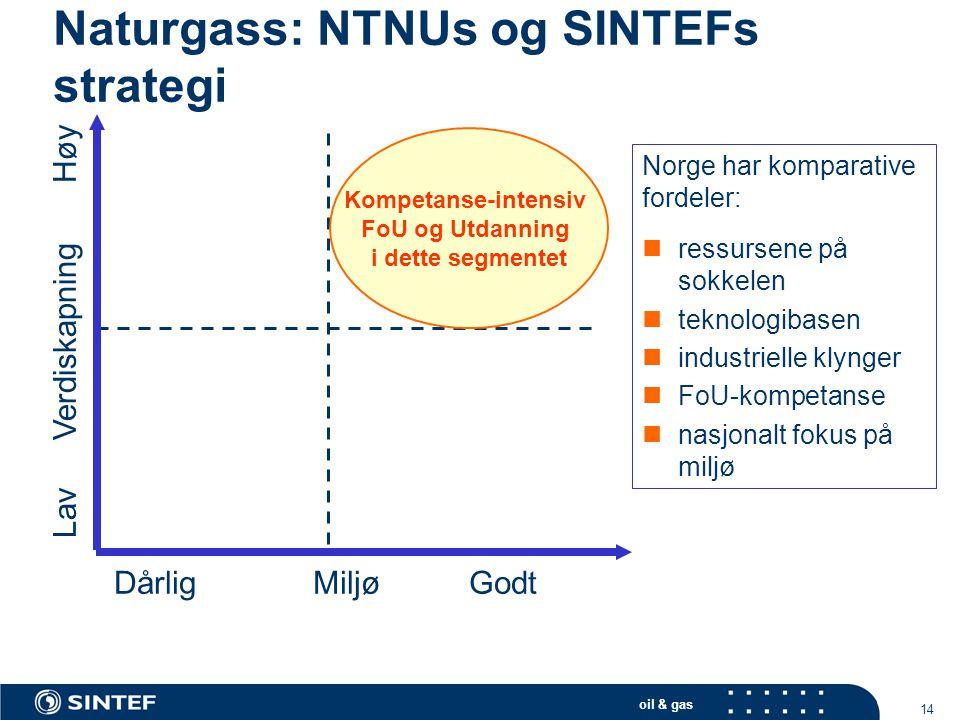 Naturgass: NTNUs og SINTEFs strategi