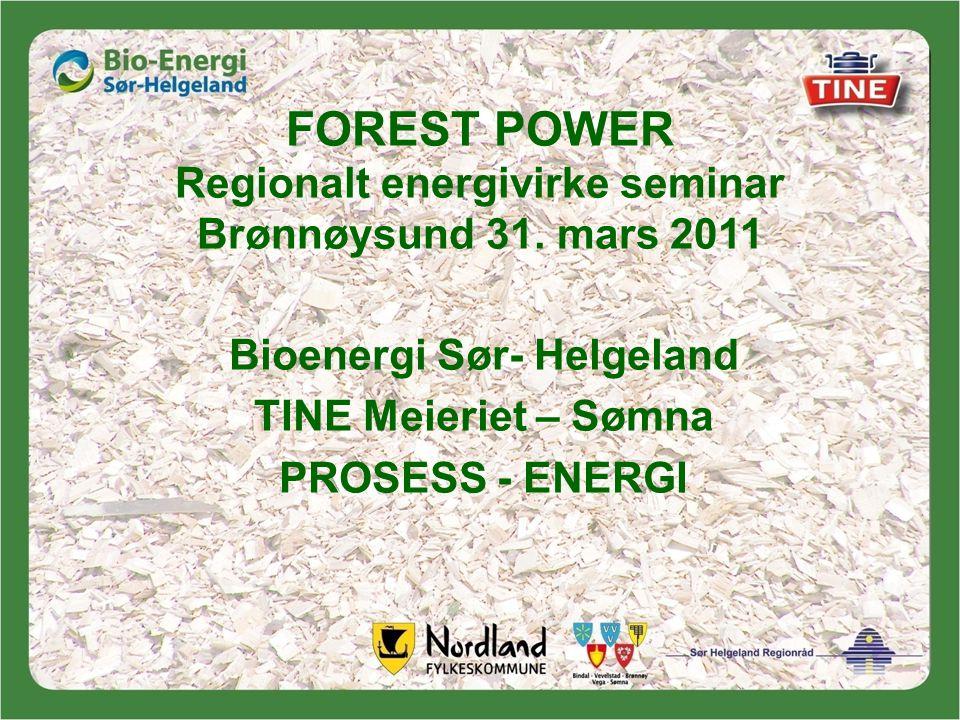 FOREST POWER Regionalt energivirke seminar Brønnøysund 31. mars 2011