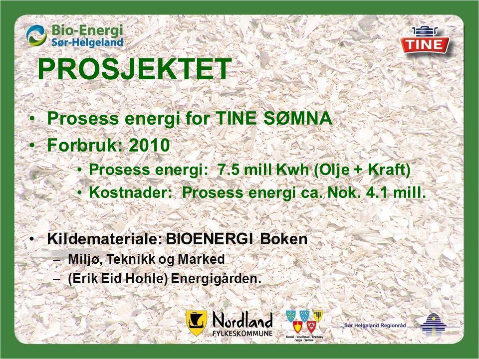 PROSJEKTET Prosess energi for TINE SØMNA Forbruk: 2010
