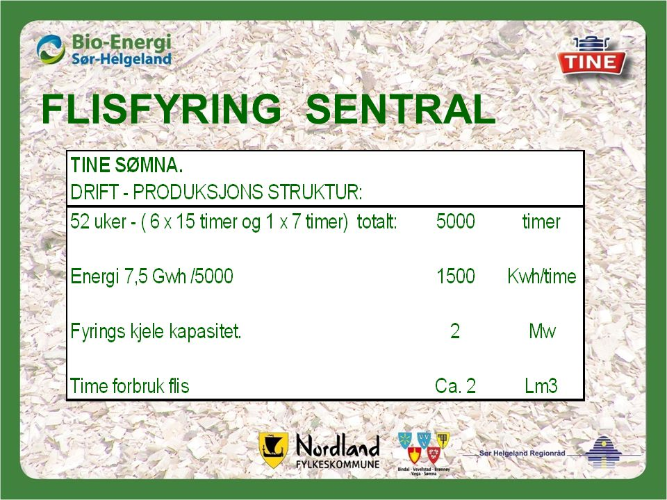 FLISFYRING SENTRAL