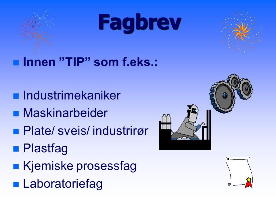 Fagbrev Innen TIP som f.eks.: Industrimekaniker Maskinarbeider