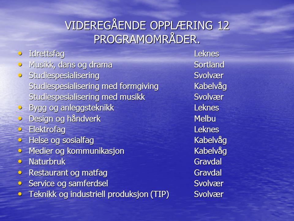 VIDEREGÅENDE OPPLÆRING 12 PROGRAMOMRÅDER.