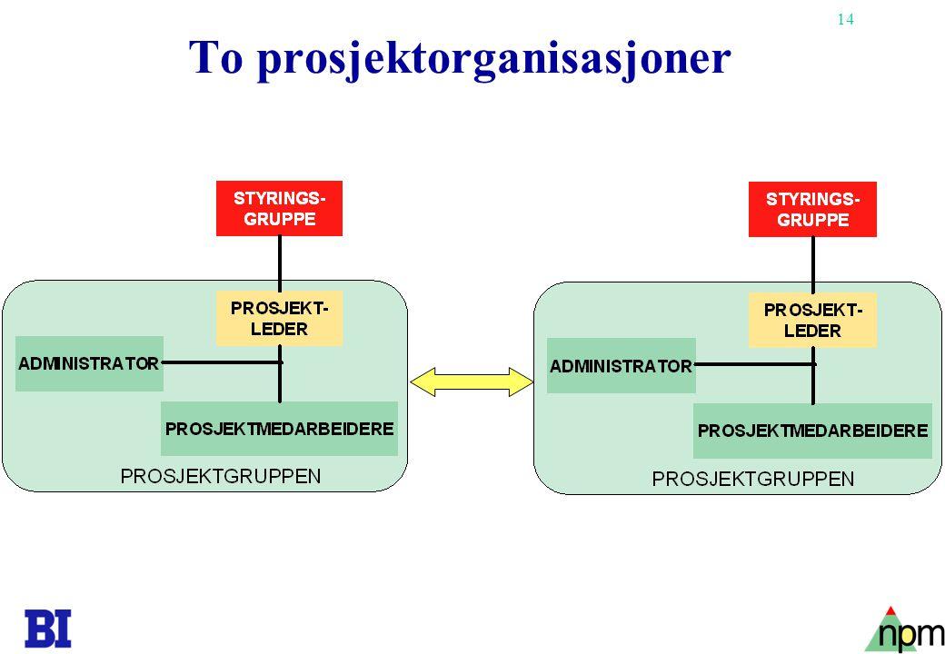 To prosjektorganisasjoner