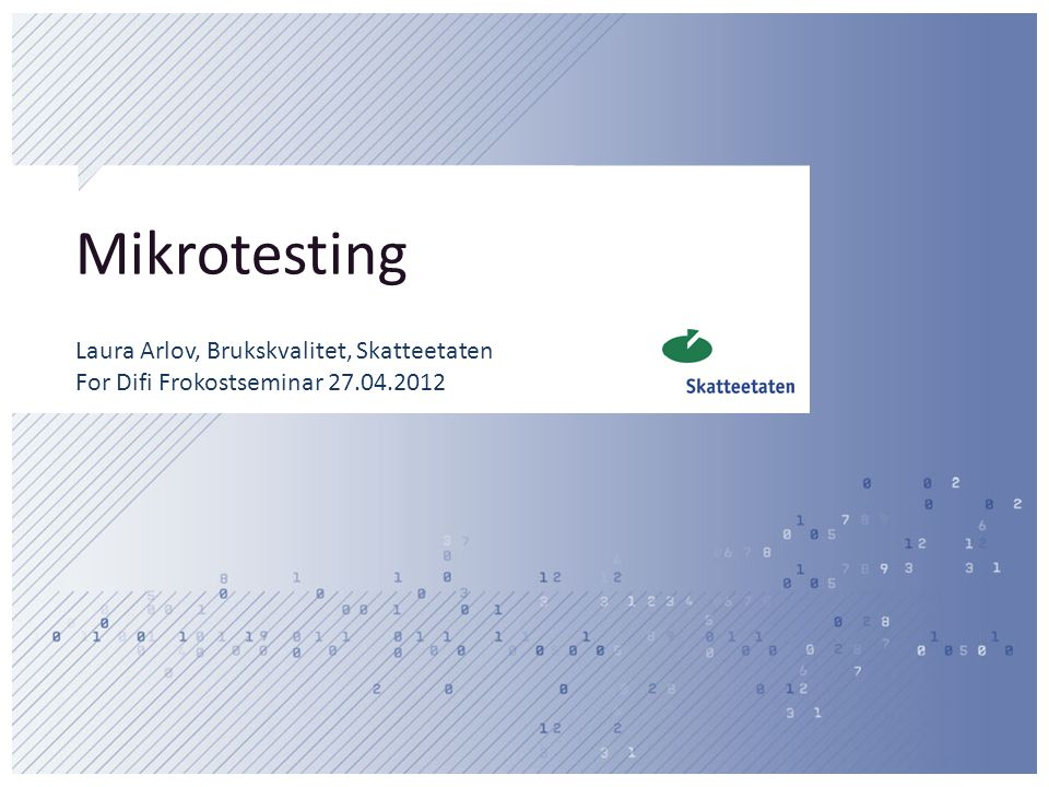 Mikrotesting Laura Arlov, Brukskvalitet, Skatteetaten