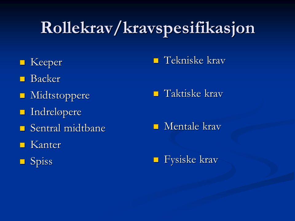 Rollekrav/kravspesifikasjon