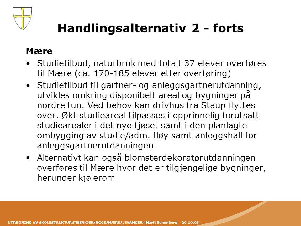 Handlingsalternativ 2 - forts