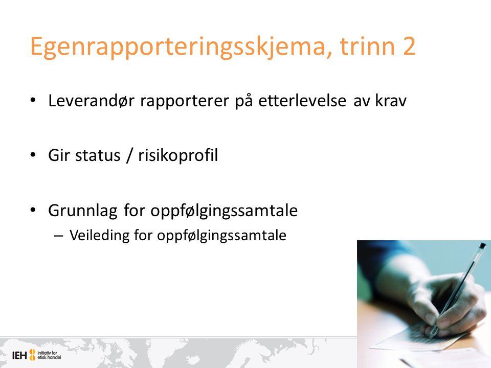 Egenrapporteringsskjema, trinn 2