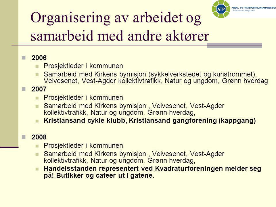 Organisering av arbeidet og samarbeid med andre aktører