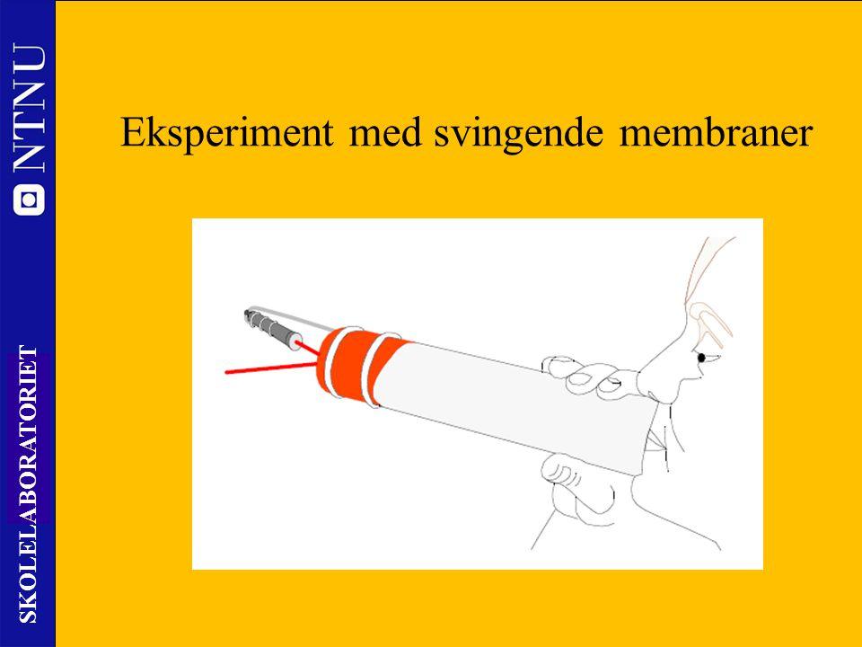 Eksperiment med svingende membraner