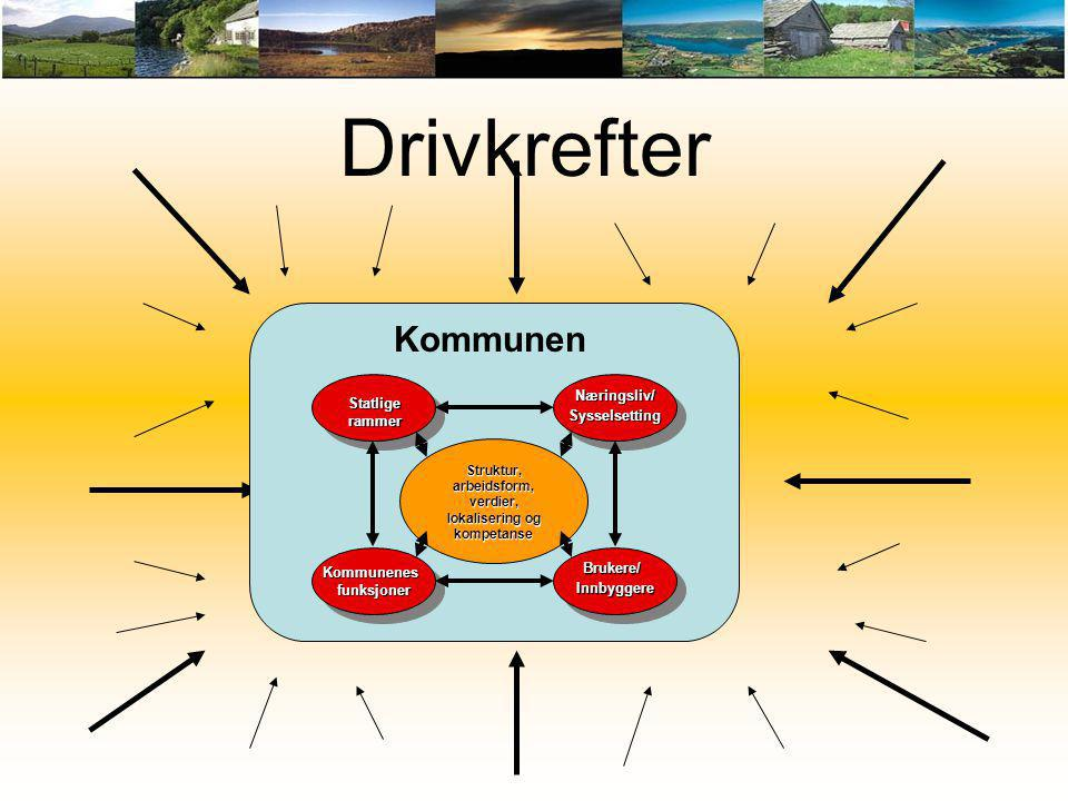 Struktur, arbeidsform, verdier, lokalisering og kompetanse