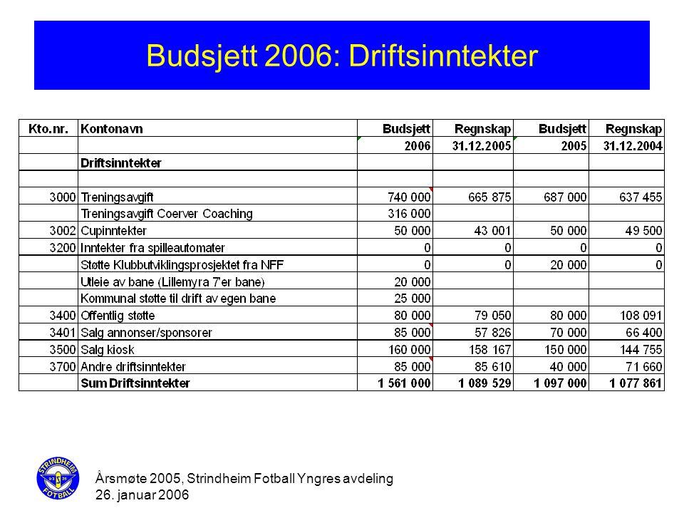 Budsjett 2006: Driftsinntekter