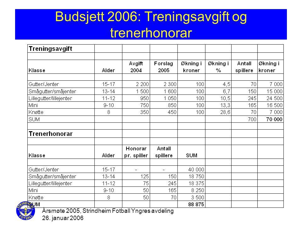 Budsjett 2006: Treningsavgift og trenerhonorar