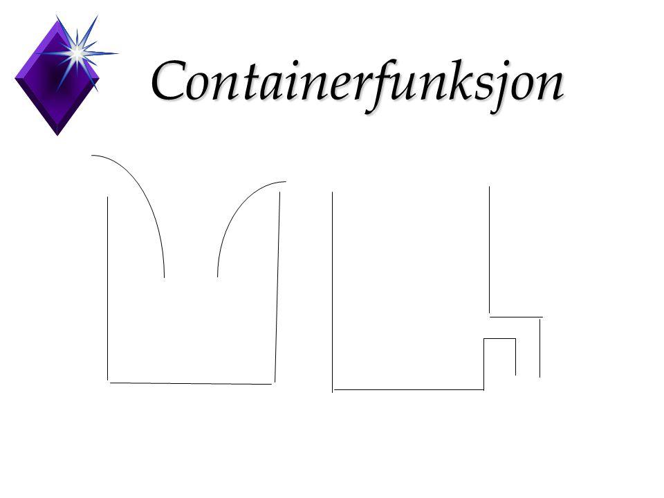 Containerfunksjon