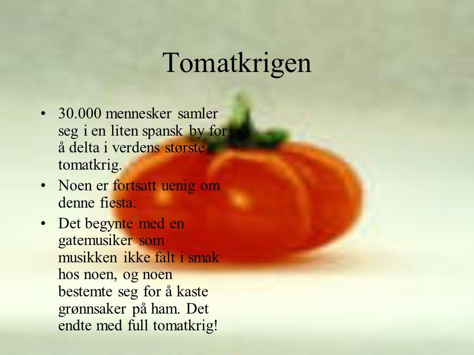 Tomatkrigen 30.000 mennesker samler seg i en liten spansk by for å delta i verdens største tomatkrig.