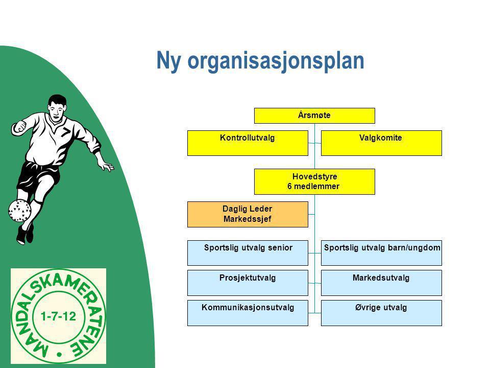 Ny organisasjonsplan Kontrollutvalg Valgkomite Hovedstyre 6 medlemmer