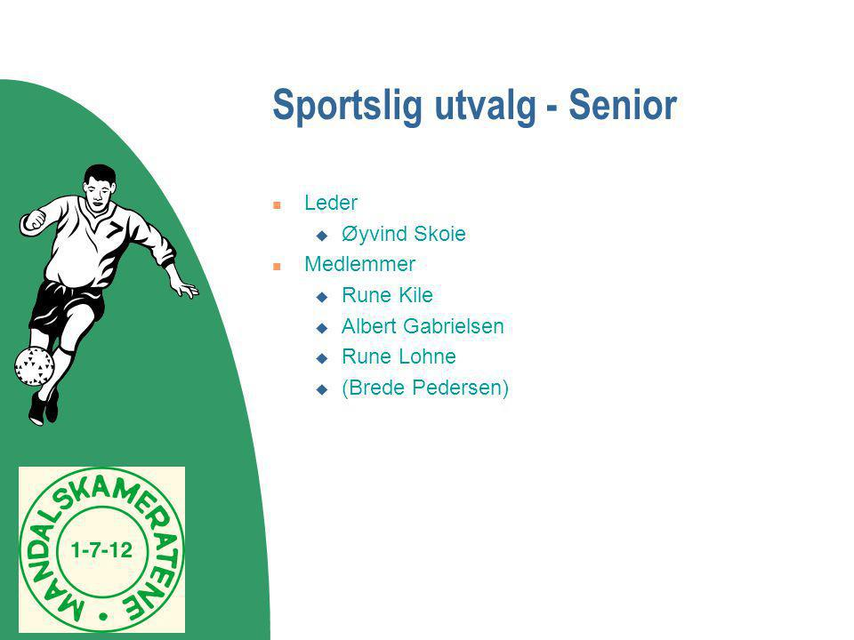 Sportslig utvalg - Senior