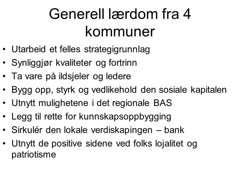 Generell lærdom fra 4 kommuner