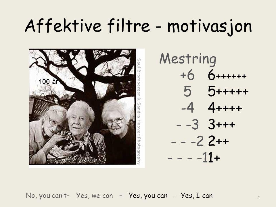 Affektive filtre - motivasjon