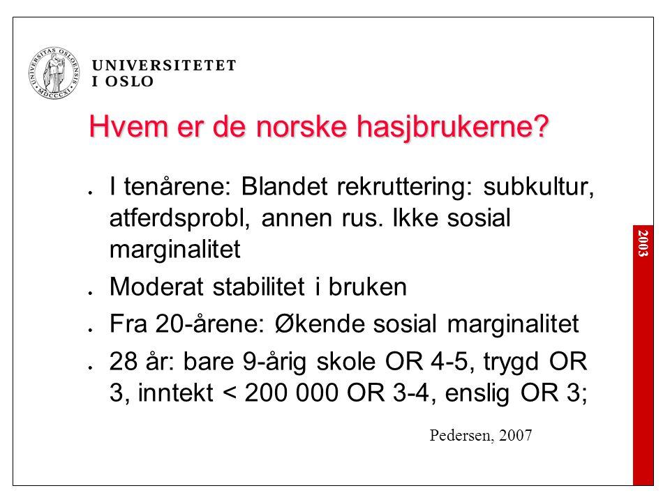 Hvem er de norske hasjbrukerne