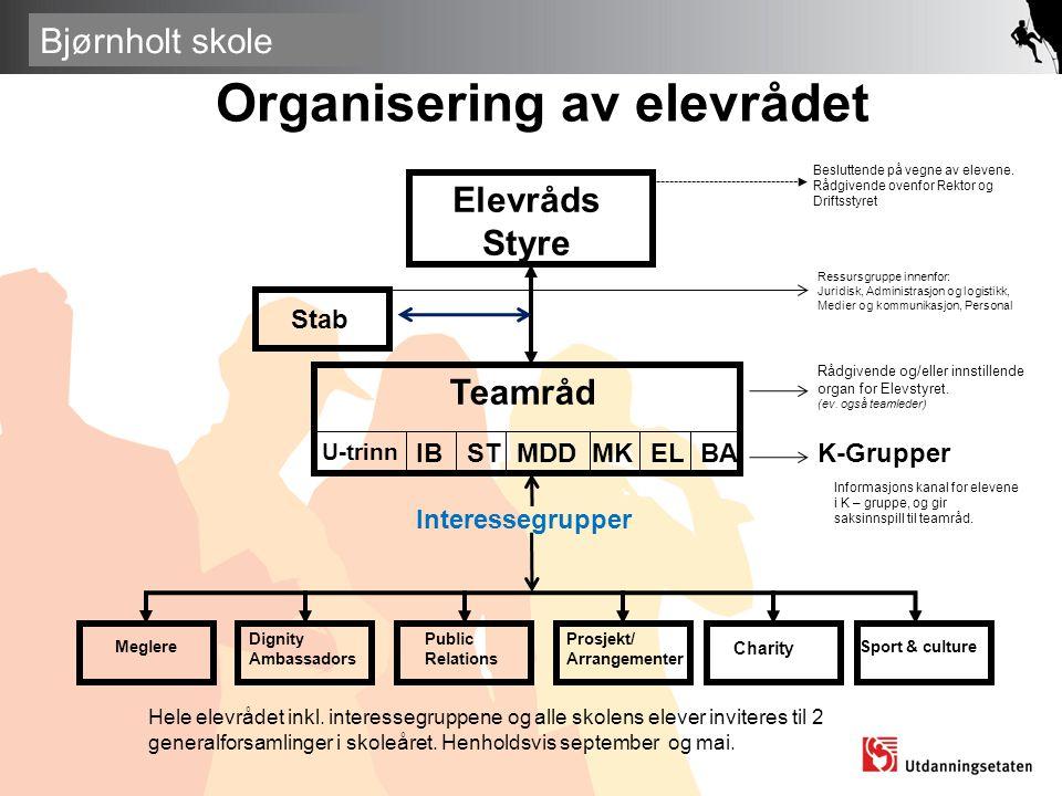 Organisering av elevrådet