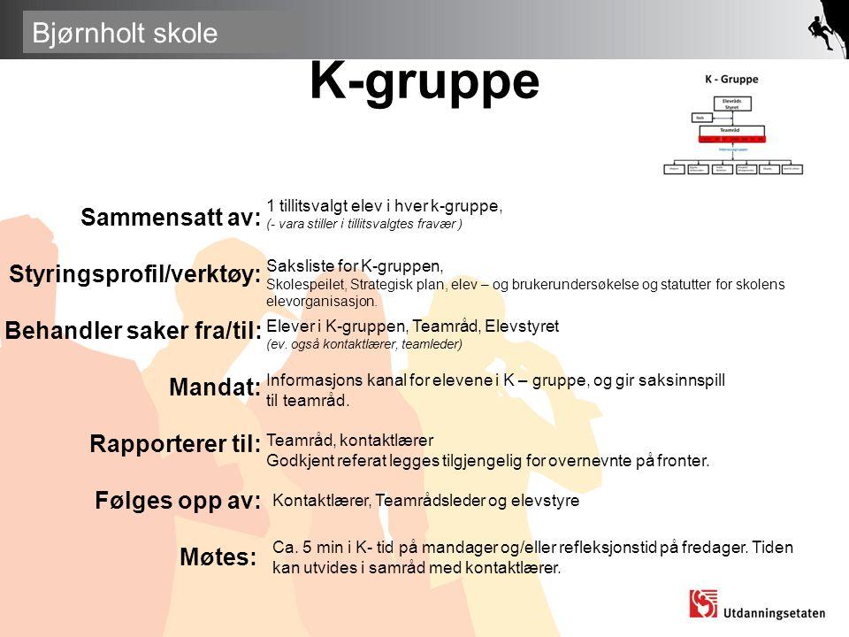 K-gruppe Sammensatt av: Styringsprofil/verktøy: