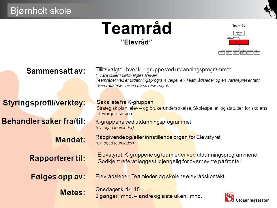Teamråd Elevråd Sammensatt av: Styringsprofil/verktøy: