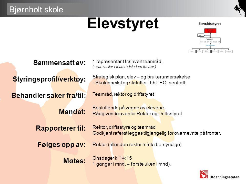 Elevstyret Sammensatt av: Styringsprofil/verktøy: