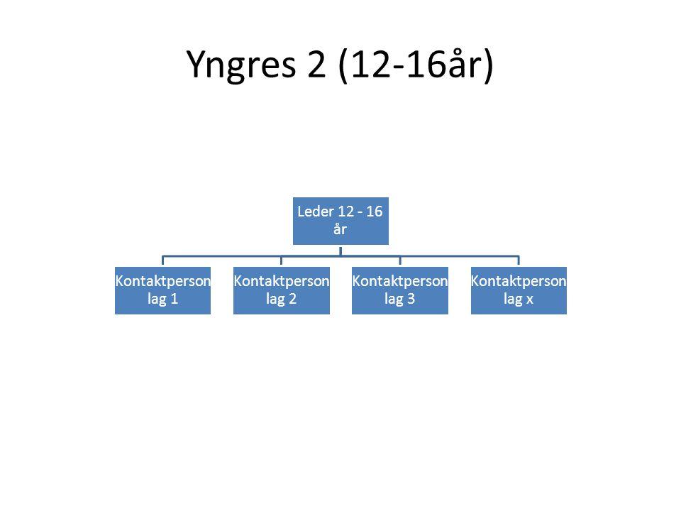 Yngres 2 (12-16år) Leder 12 - 16 år Kontaktperson lag 1