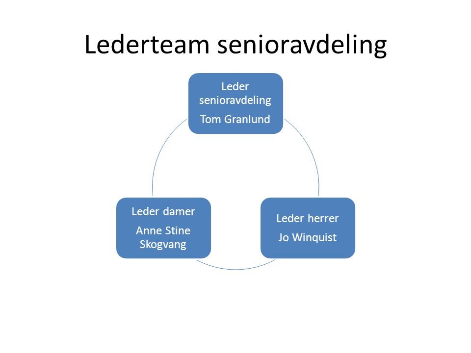 Lederteam senioravdeling
