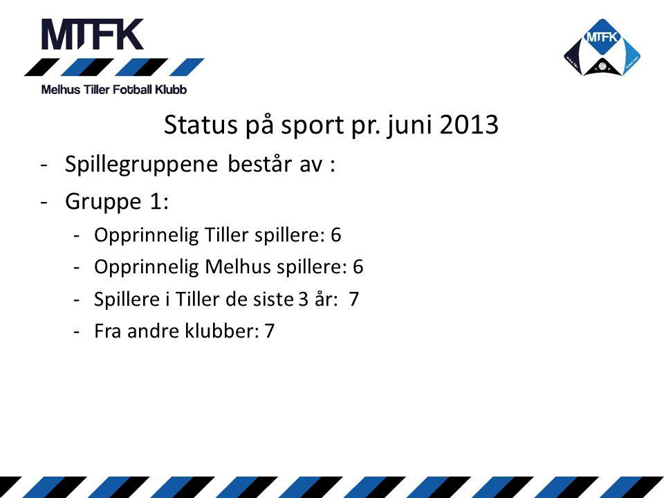 Status på sport pr. juni 2013 Spillegruppene består av : Gruppe 1: